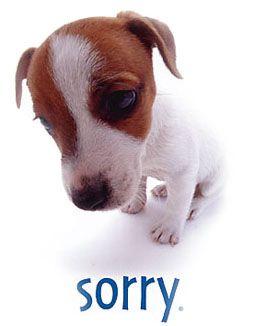 לבקש סליחה